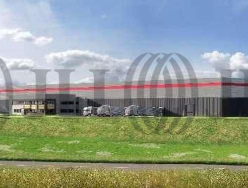 Plateformes logistiques Pecquencourt, 59146 -  RUE JEAN JAURES - 10056814