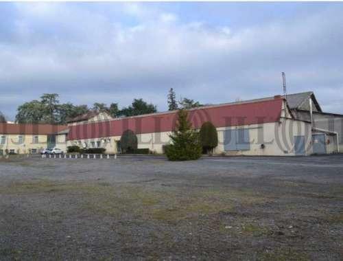Activités/entrepôt Chazelles sur lyon, 42140 - undefined - 10225003