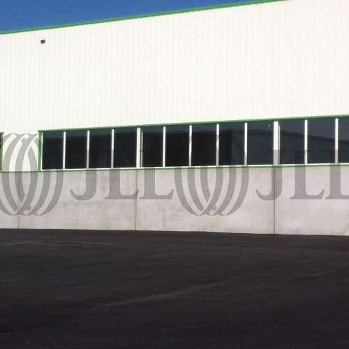 Activités/entrepôt Neuville en ferrain, 59960 - undefined - 3533041