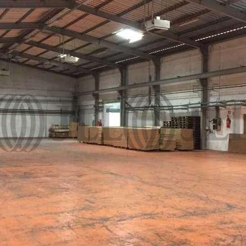 Activités/entrepôt Morangis, 91420 -  RUE DENIS PAPIN - 9467616