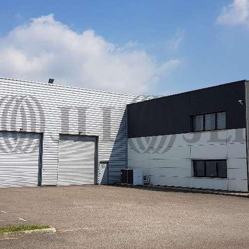 Activités/entrepôt Decines charpieu, 69150 - undefined - 9575146