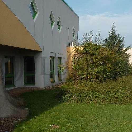 Activités/entrepôt Genas, 69740 - Transporteur : location bâtiment mixte - 9575951