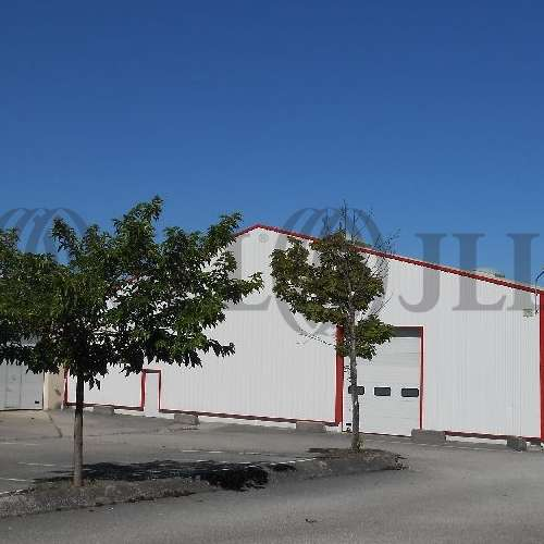 Activités/entrepôt Charvieu chavagneux, 38230 - undefined - 9590996