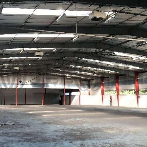 Activités/entrepôt Morangis, 91420 - 19 RUE GUSTAVE EIFFEL - 9664507