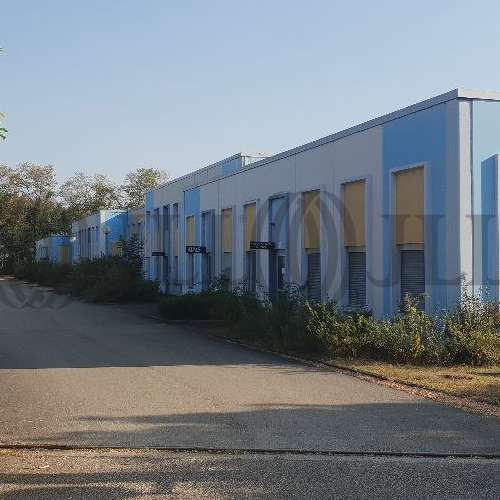 Activités/entrepôt Blyes, 01150 - Les Combières : location entrepot Ain - 9733182