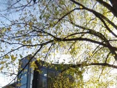 Büroimmobilie miete Hamburg foto H0662 1