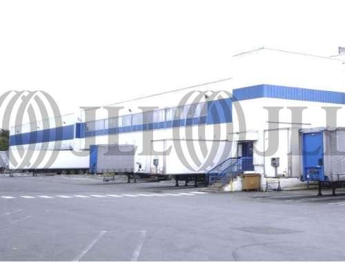 Activités/entrepôt La chapelle d armentieres, 59930 - undefined - 1259315