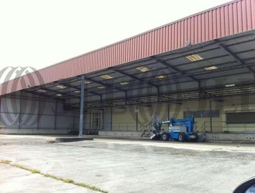 Activités/entrepôt Briouze, 61220 - undefined - 1469932
