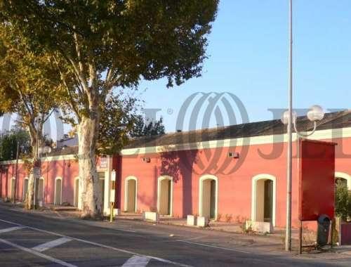 Commerces Perpignan, 66000 -  - 8190697