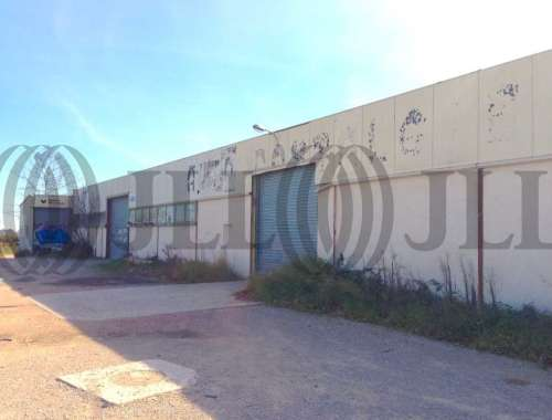 Activités/entrepôt Baillargues, 34670 - undefined - 8331009