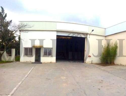 Activités/entrepôt St georges d orques, 34680 - undefined - 8381784