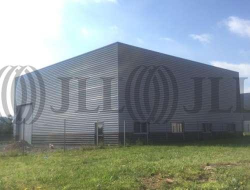 Activités/entrepôt Lamballe, 22400 - LAMBALLE - 8424473