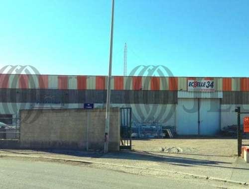 Activités/entrepôt St jean de vedas, 34430 - undefined - 8680510