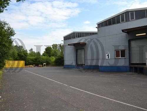 Hallen Köln, 51149 - Halle - Köln, Gremberghoven - D0979 - 9396934