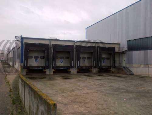 Hallen Beelitz, 14547 - Halle - Beelitz, Buchholz - B0945 - 9406584