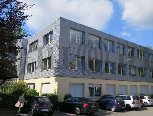 Büros Hochheim am main, 65239 - Büro - Hochheim am Main, Hochheim - F0376 - 9407538