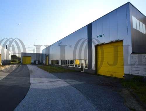 Hallen Bergheim, 50126 - Halle - Bergheim, Paffendorf - K1311 - 9420693