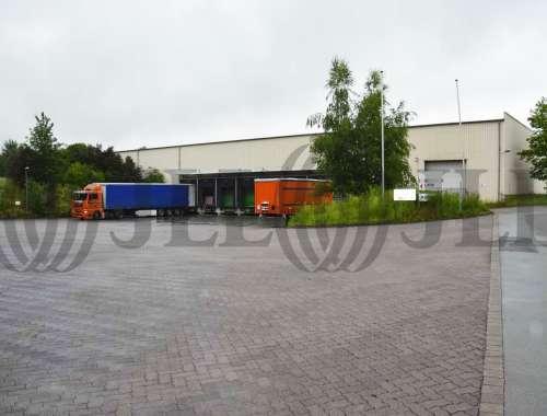 Hallen Warburg, 34414 - Halle - Warburg, Rothenburg - D1079 - 9538079