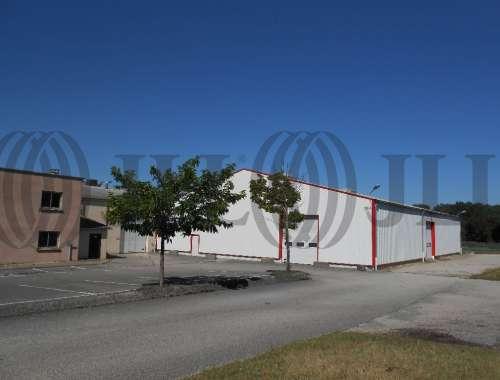 Activités/entrepôt Charvieu chavagneux, 38230 - ENTREPOT A VENDRE LYON - NORD-ISÈRE - 9590996