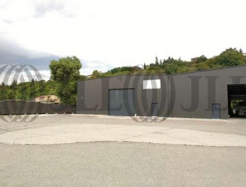 Activités/entrepôt Feyzin, 69320 - Location locaux d'activité Lyon Sud - 9783759