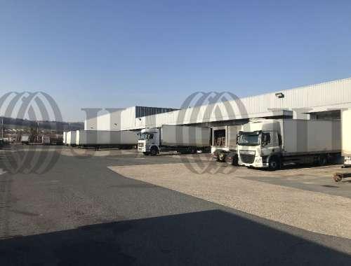 Activités/entrepôt Anse, 69480 - Entrepot à vendre Lyon Nord - Anse (69) - 9983613