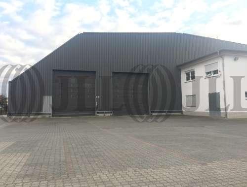 Hallen Freigericht, 63579 - Halle - Freigericht, Somborn - F2588 - 9988568