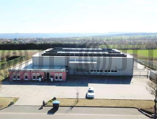 Hallen Grafschaft, 53501 - Halle - Grafschaft, Ringen - K1446 - 10031485