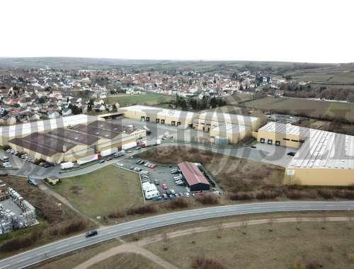 Hallen Alsheim, 67577 - Halle - Alsheim - F2620 - 10235152