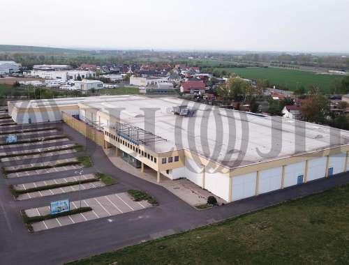 Hallen Elxleben, 99189 - Halle - Elxleben - B1784 - 10520413