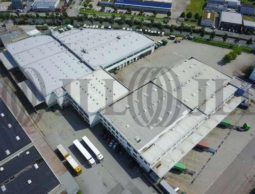 Hallen Viernheim, 68519 - Halle - Viernheim - F1037 - 10536905