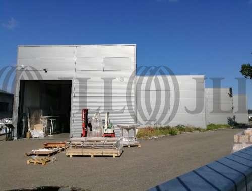 Activités/entrepôt Vourles, 69390 - LOCATION LOCAUX/ENTREPOT LYON SUD (69) - 10599147