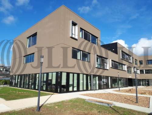 Bureaux Angers, 49000 - RUE PAPIAU DE LA VERRIE - BÂT LOIRE - LE CARRÉ D'ORGEMONT - 10775021