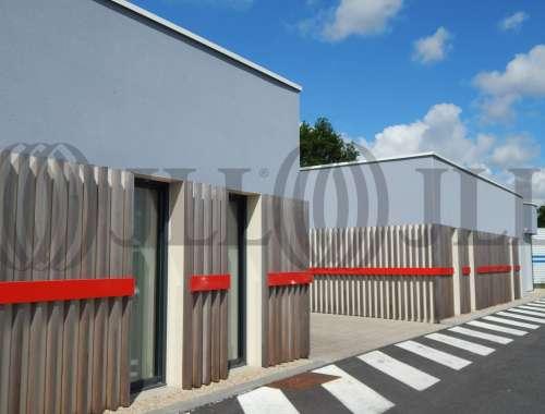 Bureaux Thouare sur loire, 44470 - 1. RUE DU TIBRE - 10804358