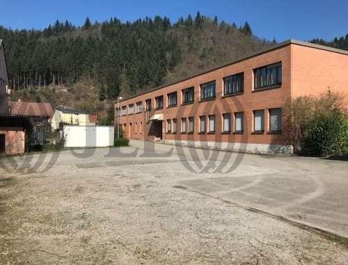 Hallen Waldkirch, 79183 - Halle - Waldkirch - S0631 - 10817534