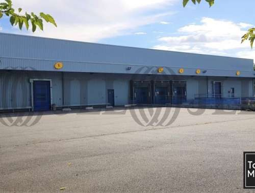 Activités/entrepôt St alban, 31140 - undefined - 10860939