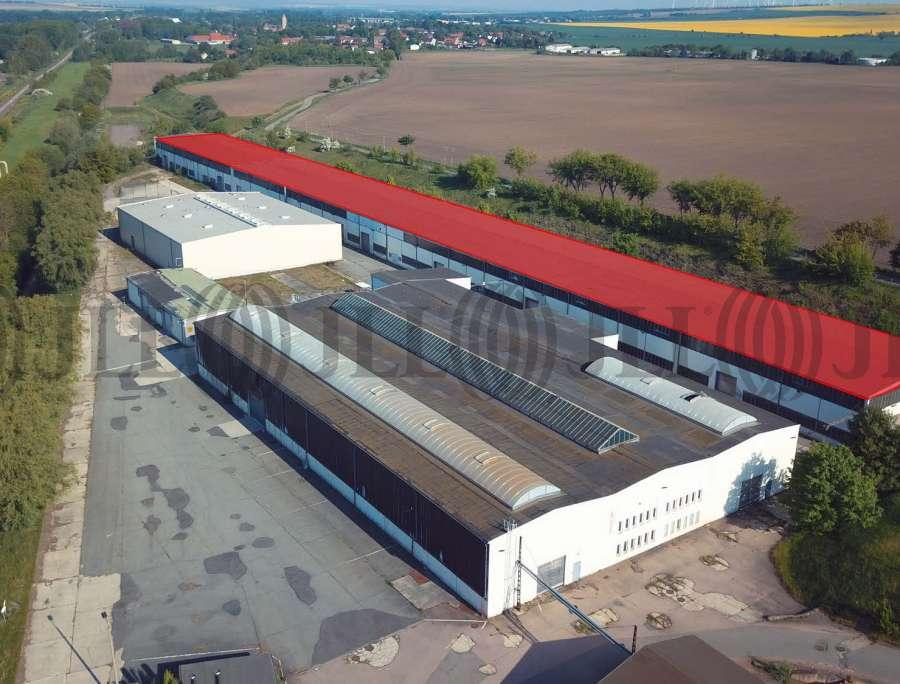 Hallen Gatersleben, 06466 - Halle - Gatersleben - B1799 - 10553569