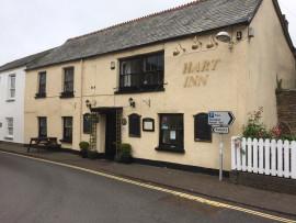 Pub Buyale Bideford foto 9439 1