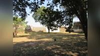 Terreno em Botucatu - 42714 - Land - Sale