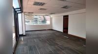 Edificio el Camino - Office - Lease