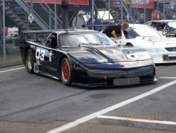 Corvette Trans-Am `Winner! - Paul Gentilozzi. 1998.