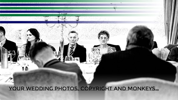 The Unspoken Truth About Your Wedding Photos, Copyright and Monkeys…