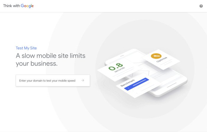 Screenshot of Google's Test My Site page