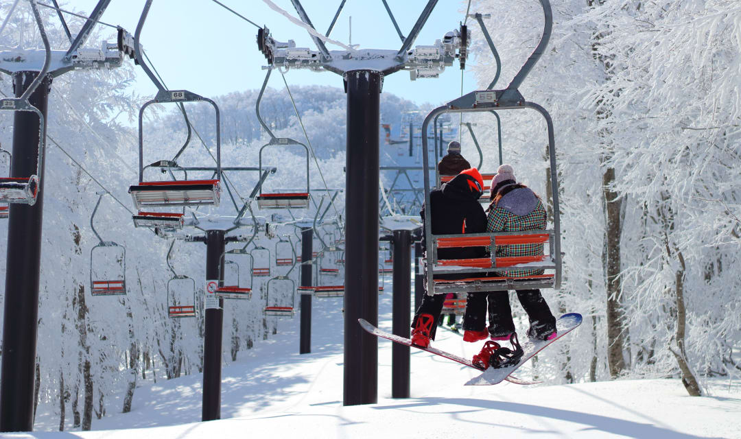 two people wearing skis riding a ski lift between snow-covered trees