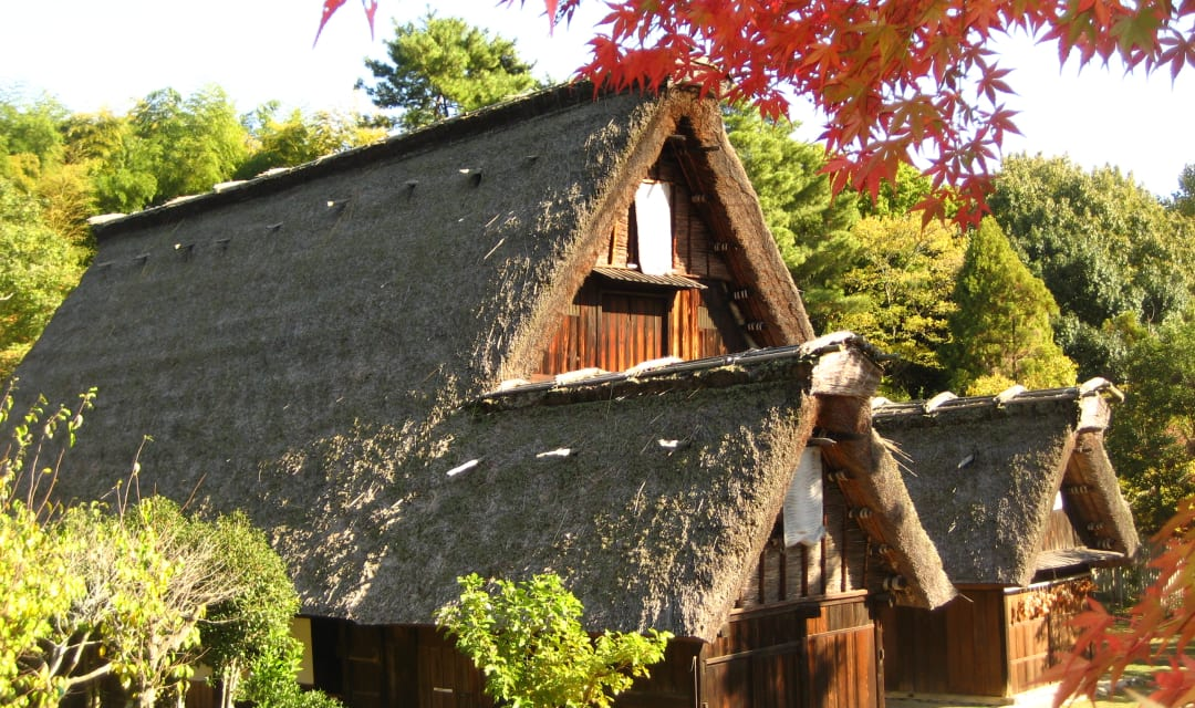 thatched roofs of traditional houses surrounded by trees