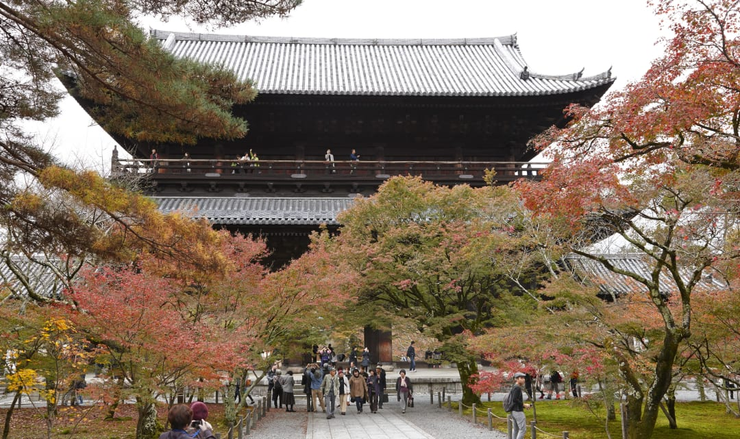 autumn foliage in front of a large temple gate