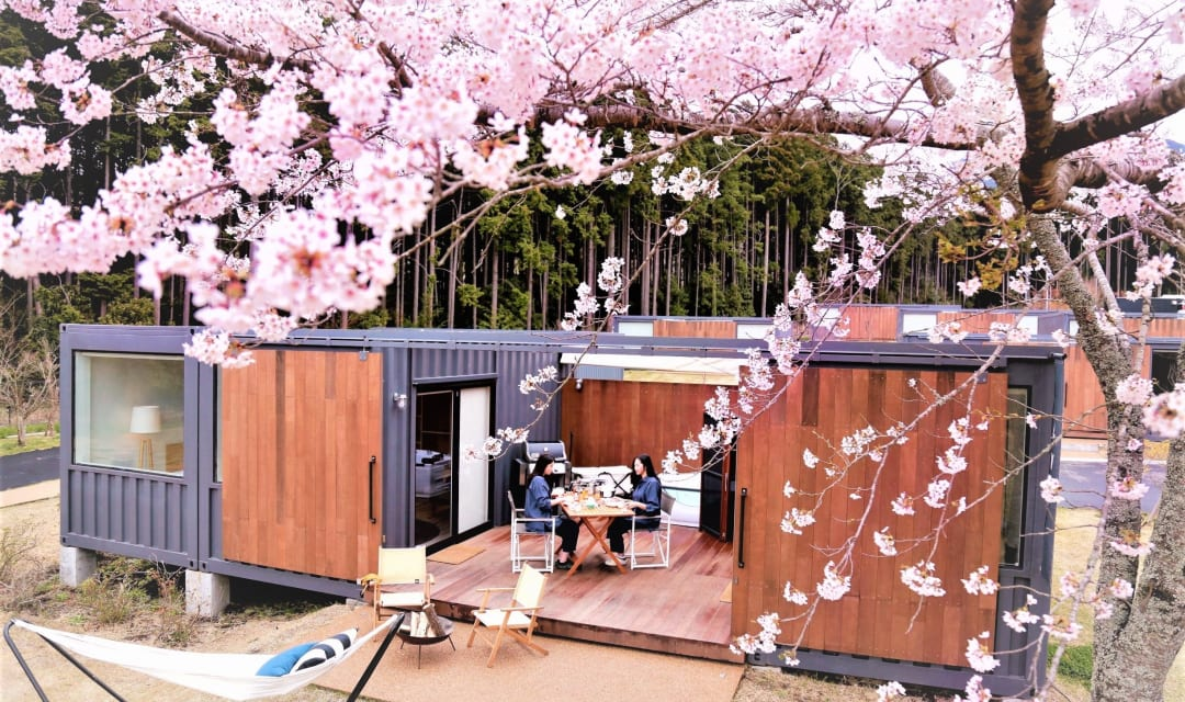 two women dining outside a cabin behind cherry blossom branches