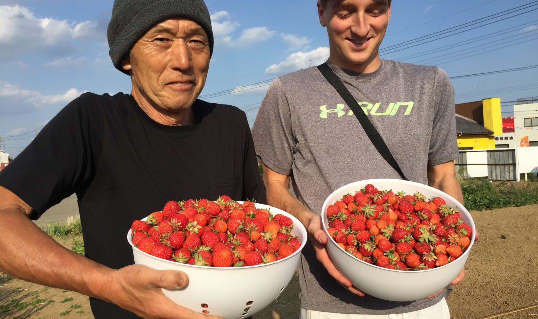 two men hold up bowls of strawberries