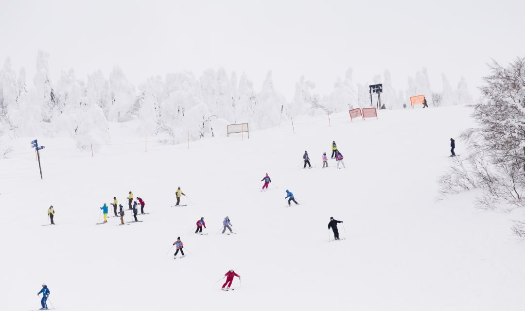 people in colored ski gear skiing on a snowy slope