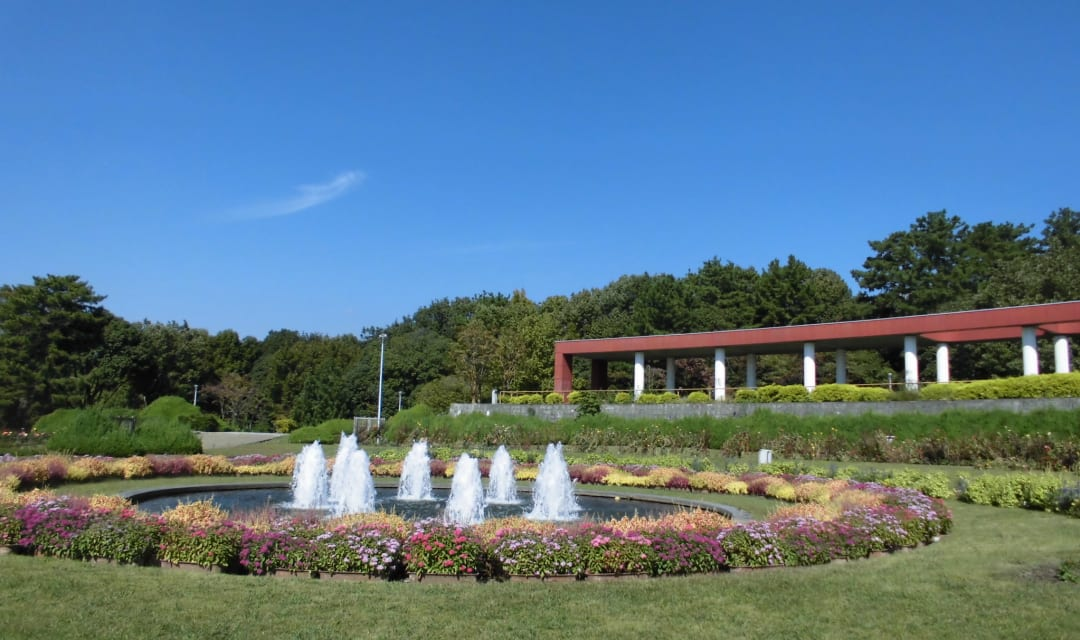 round pond with fountains surrounded by flowers