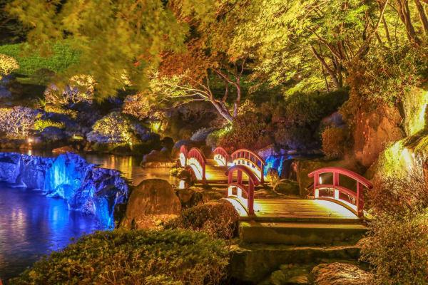 แนะนำ 5 สถานที่ท่องเที่ยวที่คุณสามารถเปิดประสบการณ์กับวัฒนธรรมดั้งเดิมของญี่ปุ่นในรูปแบบใหม่!